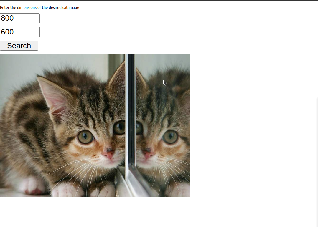 Cat Image Viewer